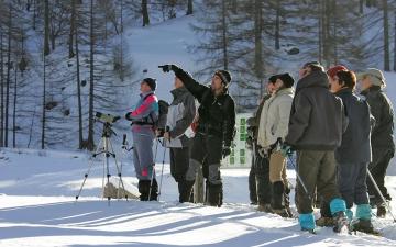 Raquettes à neige_2